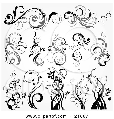 Collection Of Botanical Scrolling Plants And Flowers, In Black And White Posters, Art Prints