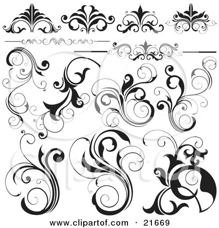 Collection Of Black And White Flourishes, Flowers And Vines, Over White Posters, Art Prints