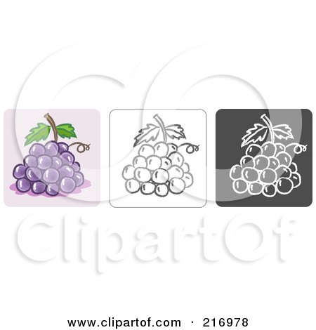 Royalty-Free (RF) Clipart Illustration of a Digital Collage Of Three Grape Icons In Color, Sketch Style And Black And White by Qiun
