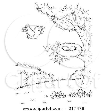 Empty Bird Nest Nestled In The