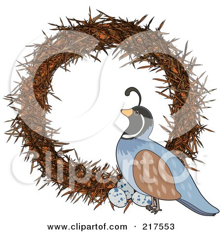 Royalty-Free (RF) Clipart Illustration of a Quail On A Wreath In The Shape Of A Q by Maria Bell