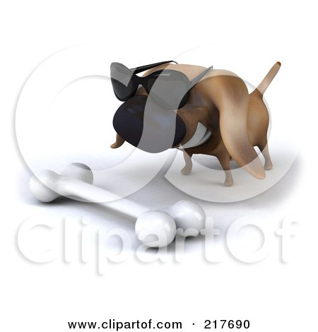 Royalty-Free (RF) Clipart Illustration of a 3d Chubby Dachshund Dog Wearing Shades And Staring At A Bone by Julos