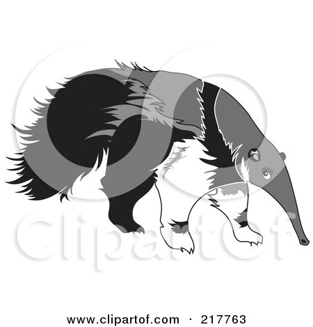 RoyaltyFree RF Anteater Clipart