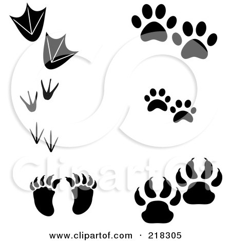 Royalty-Free (RF) Clipart Illustration of a Digital Collage Of Duck, Penguin, Bird, Raccoon, Dog, Cat And Bear Prints by Pams Clipart
