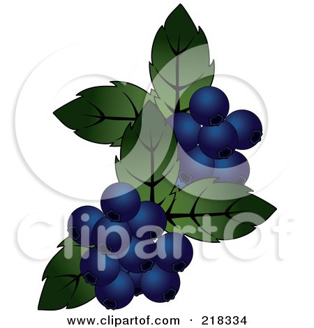 Royalty-Free (RF) Clipart Illustration of Blueberries And Green Leaves by Pams Clipart