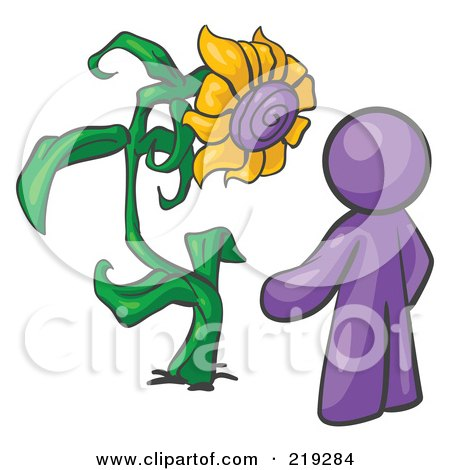 Royalty-Free (RF) Clipart Illustration of a Purple Man Proudly Standing In Front Of His Giant Sunflower In His Garden  by Leo Blanchette