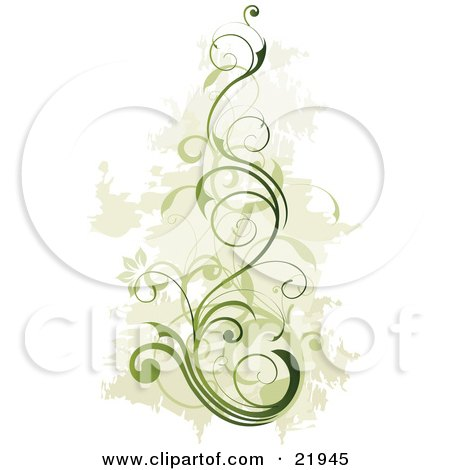 Green Vine Plant With Blooming Flowers Over A Faded Green And White Background Posters, Art Prints