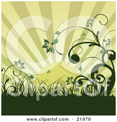 Green Morning Sunrise Over An Organic Wildflower And Grass Landscape Posters, Art Prints