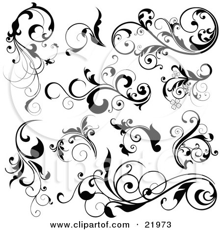 Collection Of Black Leafy Vines And Accents On A White Background Posters, Art Prints