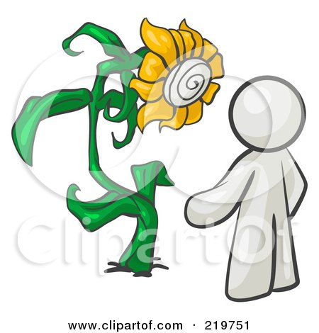 Royalty-Free (RF) Clipart Illustration of a White Man Proudly Standing In Front Of His Giant Sunflower In His Garden  by Leo Blanchette