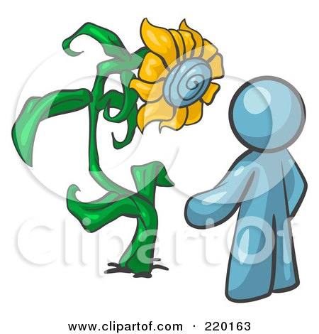 Royalty-Free (RF) Clipart Illustration of a Denim Blue Man Proudly Standing In Front Of His Giant Sunflower In His Garden  by Leo Blanchette