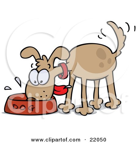 Happy And Hungry Brown Dog Wagging His Tail And Slobbering In His Food Bowl Posters, Art Prints