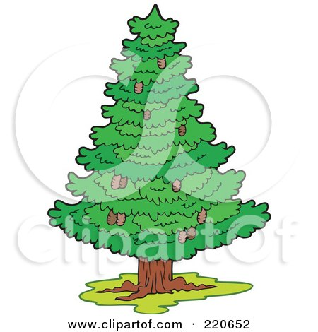 Royalty-Free (RF) Clipart Illustration of a Wild, Lush And Green Coniferous Tree With Pinecones by visekart
