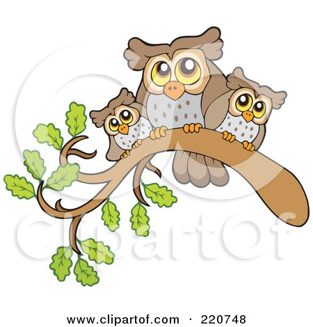 Royalty-Free (RF) Clipart Illustration of a Mother And Baby Owls Perched On A Branch by visekart