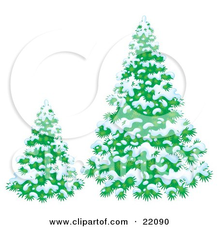 Clipart Illustration of a Small And Large Evergreen Trees Flocked In Snow On A Winter Day by Alex Bannykh