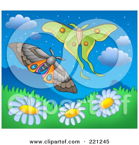 Royalty-Free (RF) Clipart Illustration of Two Moths Over Daisy Hills At Dusk by visekart