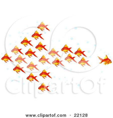 Clipart Illustration of a Group Of Goldfish With Bubbles, Schooling In The Shape Of An Arrow Pointing Left, One Fish Swimming Away In A Different Direction by Tonis Pan