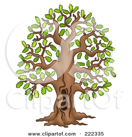 Royalty Free Stock Illustrations of Trees by visekart Page 5