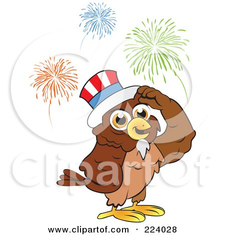 Royalty-Free (RF) Clipart Illustration of a Brown Owl Wearing An American Hat And Standing Under Fireworks by Vitmary Rodriguez