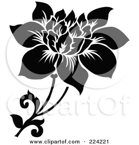 Black And White Interior Design Concept