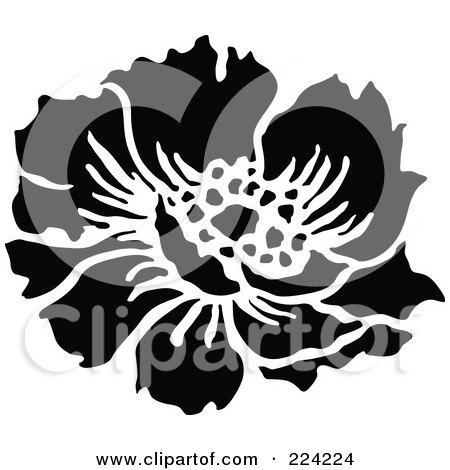 Flower Art Black And White Black And White Flower Design
