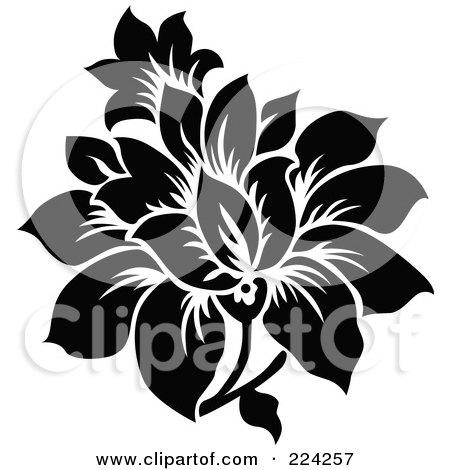 Flower Prints Black And White Black And White Flower Design