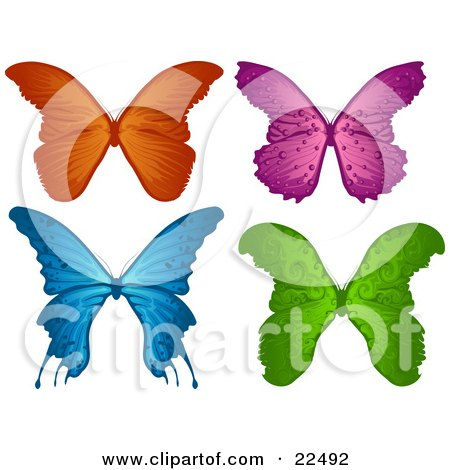 Clipart Illustration of a Collection Of Orange, Purple, Blue And Green Elegant Butterflies, On A White Background by Tonis Pan