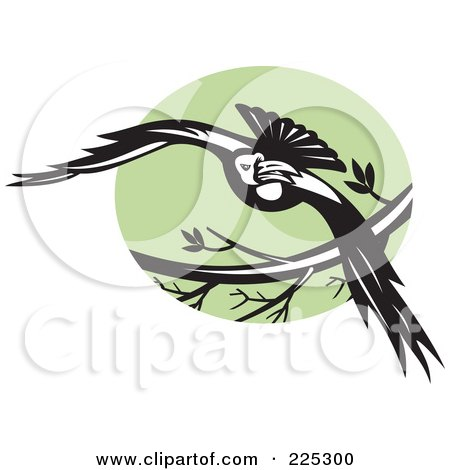 Royalty-Free (RF) Clipart Illustration of a Flying Raven And Green Circle Logo by patrimonio