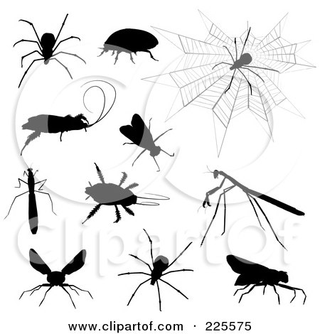 Royalty-Free (RF) Clipart Illustration of a Digital Collage Of Creepy Silhouetted Insects by KJ Pargeter