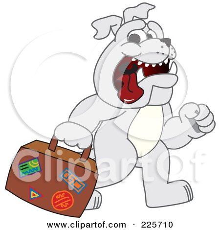 Royalty-Free (RF) Clipart Illustration of a Gray Bulldog Mascot Walking And Carrying A Suitcase by Toons4Biz