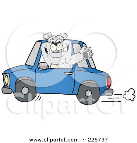 Royalty-Free (RF) Clipart Illustration of a Gray Bulldog Mascot Waving And Driving A Blue Car by Toons4Biz