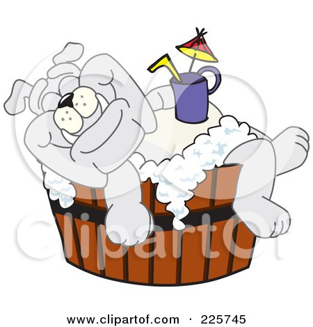 Royalty-Free (RF) Clipart Illustration of a Gray Bulldog Mascot Bathing With A Drink In A Wooden Tub by Toons4Biz