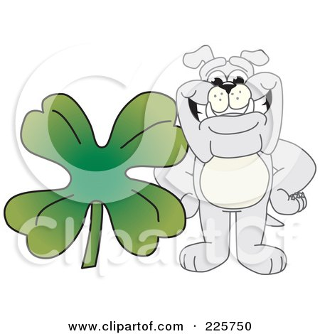 Royalty-Free (RF) Clipart Illustration of a Gray Bulldog Mascot With A Four Leaf Clover by Toons4Biz
