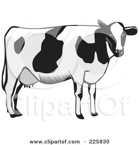 Royalty-Free (RF) Clipart Illustration of a Dairy Cow In Grayscale by David Rey