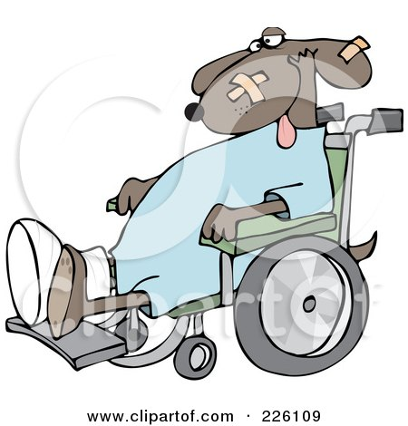 Royalty-Free (RF) Clipart Illustration of a Dog With A Cast And Bandages, Sitting In A Wheelchair by djart