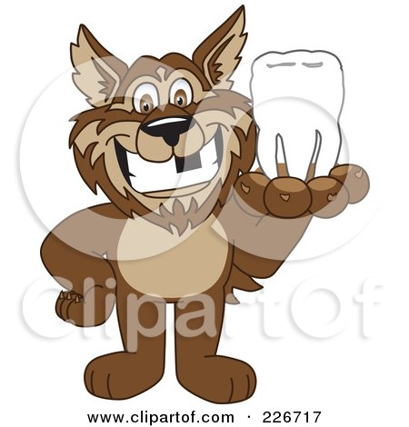 Royalty-Free (RF) Clipart Illustration of a Wolf School Mascot Holding A Tooth by Toons4Biz