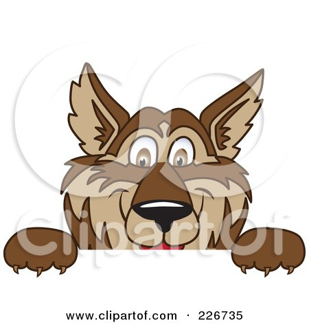 Royalty-Free (RF) Clipart Illustration of a Wolf School Mascot Looking Over A Blank Sign by Toons4Biz