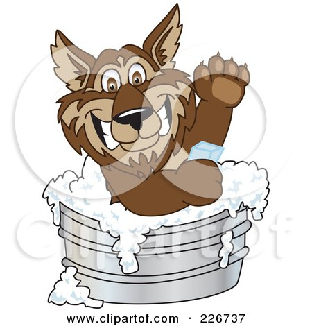 Royalty-Free (RF) Clipart Illustration of a Wolf School Mascot Bathing With Soap In A Metal Tub by Toons4Biz