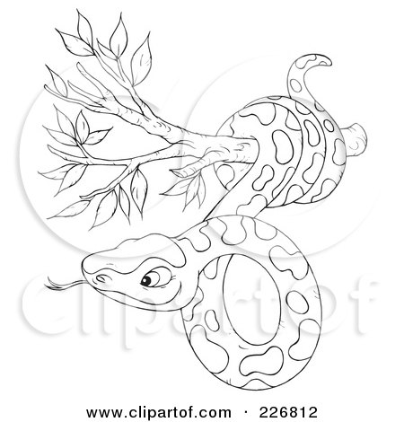 Snake Coloring Pages on Coloring Page Outline Of A Snake In A Tree By Alex Bannykh  226812