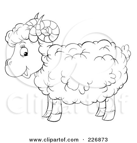 Sheep Horns Drawing of a Cute Horned Sheep