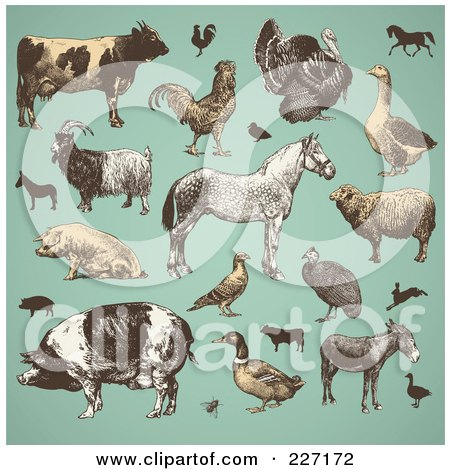 Royalty-Free (RF) Clipart Illustration of a Digital Collage Of Vintage Farm Animals And Livestock On Turquoise by Anja Kaiser