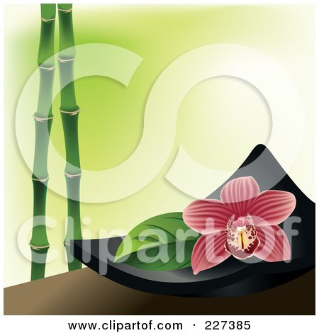 Royalty-Free (RF) Clipart Illustration of a  Red Striped Orchid Flower On A Black Spa Bowl Over Green With Bamboo by Eugene