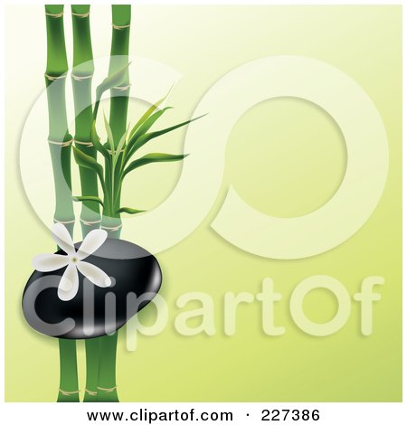 Royalty-Free (RF) Clipart Illustration of a White Frangipani Flower Over A Spa Stone And Bamboo On Green by Eugene