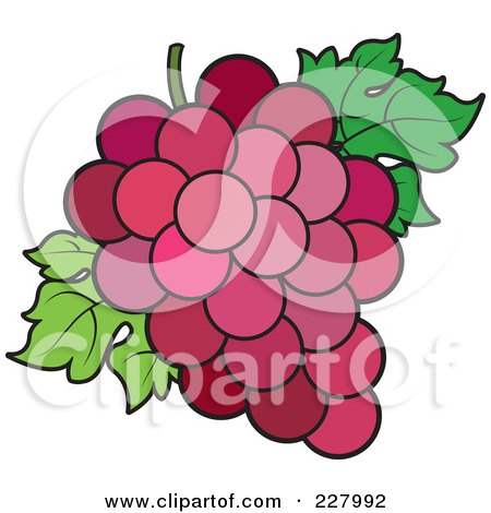 Royalty-Free (RF) Clipart Illustration of a Bunch Of Red Grapes And Leaves by Lal Perera