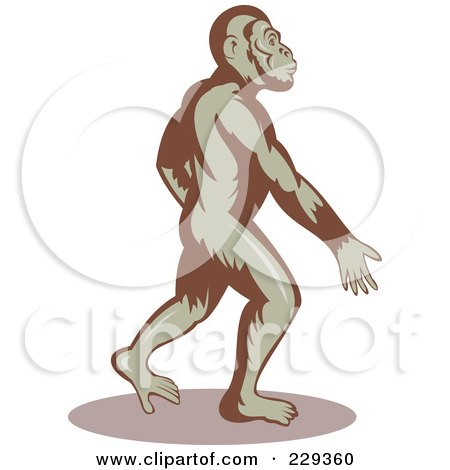 Royalty-Free (RF) Clipart Illustration of an Ape Walking And Swinging His Arms by patrimonio