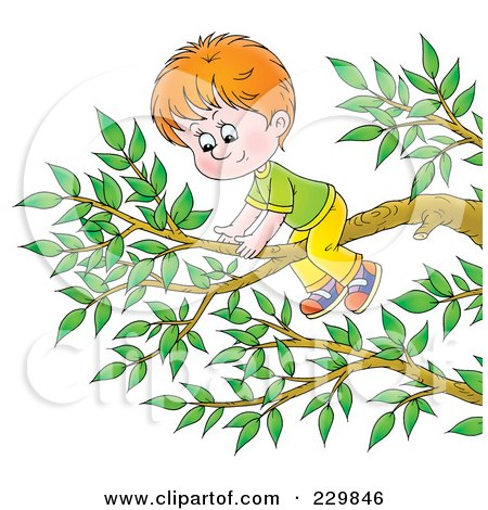 Kid Climbing Tree Climbing a Tree Prints