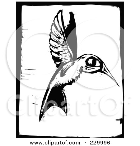 Royalty-Free (RF) Clipart Illustration of a Black And White Woodcut Styled Hummingbird With A Black Border by xunantunich