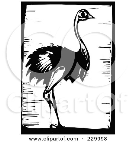 Royalty-Free (RF) Clipart Illustration of a Black And White Woodcut Styled Ostrich With A Black Border by xunantunich