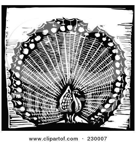 Royalty-Free (RF) Clipart Illustration of a Black And White Woodcut Styled Peacock With A Black Border by xunantunich