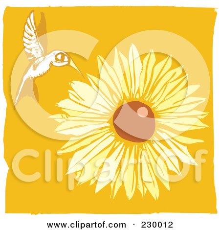 Royalty-Free (RF) Clipart Illustration of a Wild Hummingbird Hovering Near A Sunflower Over Orange by xunantunich